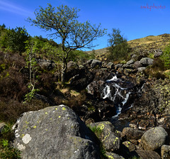 The merrick and other photos (swkphoto) Tags: merrick hill hillwalking climb scenic water fall birds lambs