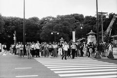 Tokyo #bnwfilm (31lucass shots) Tags: peopleinstreet people snapshot streetsnap vintagecamera 50mmlens tokyostreet japanstreet japan shootfilm analoguefilm negativefilm blackandwhitefilm minoltax700 minoltafilm fomapanfilm fomapanclassic fomapan100 fomapan bnwfilm