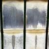 DSC05789 (rivetmoscow) Tags: serresdauteuil serres serre auteuil sergerivet rivetmoscow сержриве rivet