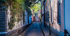 2018 - Mexico City - Calle Aguacate Coyoacan (Ted's photos - For Me & You) Tags: 2018 cdmx coyoacan cropped mexico mexicocity nikon nikond750 nikonfx tedmcgrath tedsphotos tedsphotosmexico vignetting streetscene street cobblestones lane narrowstreet narrowlane