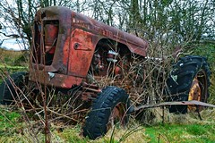 (Zak355) Tags: rothesay isleofbute bute scotland scottish tractor davidbrown 990 vintage old classic rust rusty farm farming