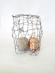 transmuting news #25 (Ines Seidel) Tags: transmutation transformation news paper cage wire egg pulp draht käfig ei newspaper zeitung