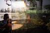 #02 (Sakulchai Sikitikul) Tags: street snap streetphotography sony fish bird ratchaburi 28mm a7s thailand voigtlander