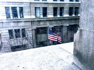 Windy Winter Flag