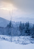 Let there be Light (Sarah_Brooks) Tags: light breakincloud lighting highlands scotland mountains snowing snow tree snowy glen landscape snowscape