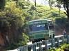 TNSTC TN 43 N 0531 Coonoor – Korakundah (rajkumar.lark) Tags: selas kaikatty manjoor melkundah thaisola coonoor coonoorkorakundahbus hillrider kaikattybus korakundah korakundahbus smallbus tamilnadustatetransportcorporation tn43n0531 tnstc tnstckorakundah travelphotography travel totravelistolive travelpictures travelbybus bustravel buslovers bus govtbus governmentbus larksphotography lark publictransport transport shortwheelbaseswb swb tnstcooty shortwheelbase