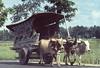CHARRETTE PAILLE (Jean d'Hugues) Tags: charrette boeufs paille bali indonésie nature