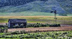 abandoned dreams (Pattys-photos) Tags: abandoned house windmill farm idaho neglected decayed broken ramshackle dilapidated derelict pattypickett4748gmailcom pattypickett