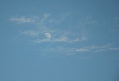 Moon and clouds (Laineyb93) Tags: daymoon moon moonphase clouds nikon nikond7000 nikonworld sky