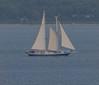 German stay sail schooner (frankmh) Tags: yacht schooner staysailschooner öresund sailing sail boat