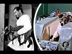 A triste história do primeiro cão no espaço (portalminas) Tags: a triste história do primeiro cão no espaço