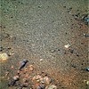 Pebbles and Sand (sjrankin) Tags: 2june2018 edited nasa mars colorized rgb bands257 opportunity endeavourcrater sand pebbles