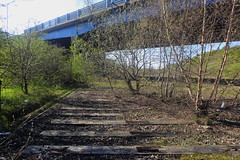 Former railway sleepers under Parkway bridge, Catcliffe, Sheffield  (Former SDR route)   April 2018 (dave_attrill) Tags: catcliffe sheffield railway line disused trackbed remains goods sdr sleepers ballast parkway bridge april 2018 sheffielddistrictrailway southyorkshire
