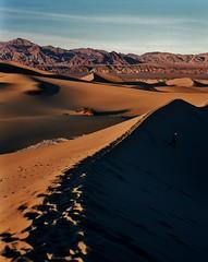 Death Valley Sand Dunes (the dick graysons) Tags: pentax67ii homedeveloped expiredflim fujiprovia100 provia100 analoguephotography analogphotography e6 slidefilm mediumformat 6x7 tetenal 120 dunes deathvalley california unitedstatesofamerica usa america sanddunes fujifilm