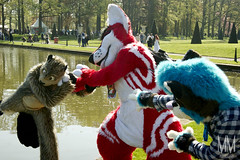 _DSC0215 (MM Furry Photo) Tags: furry fursuit fursuiting elfia ceta cetabever beaver mustelid beat fox vulpine tux dog canine multiplecharacters haarzuilens utrecht nederland nl