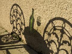 shadow (davidnofish) Tags: em1 shadow table chair bottle glass patio durris aberdeenshire scotland uk
