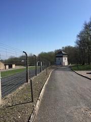 Buchenwald: Perimeter fence (jacobchristensen) Tags: spring germany memorial weimar buchenwald