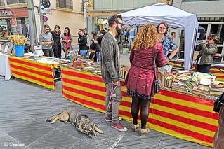 Diada de Sant Jordi, Cataluña & Diada de Sant Jordi, Catalonia