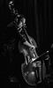 Upright Bass (tim.perdue) Tags: such sweet thunder tribute duke ellington billy strayhorn music jazz swing natalies coal fired pizza live worthington ohio columbus black white bw monochrome man person figure musician musical instrument portrait bass upright acoustic viol strings band group ensemble performance concert stage bar club