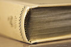 Gilded Pages (scottnj) Tags: 365the2018edition 3652018 day89365 30mar18 book books read reading gold gilded gildedpages spine bookspine page pages macro bookcover bookjacket scottnj scottodonnellphotography
