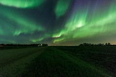 Northern Lights over Sturgeon County, Alberta (WherezJeff) Tags: timelapse northernlights auroraborealis summer night green purple curtains pillars sturgeoncounty alberta canada countryside roadside cartrails 2017 geomagnetic storm major g3 cme