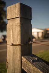Corner vertical (OzzRod) Tags: pentax k1 smcpentaxm40mmf28 vertical fence corner post wire rust shadows uncropped dailyinapril2018 bokeh