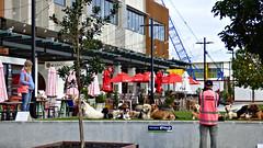 Massey, West Auckland, New Zealand (Sandy Austin) Tags: panasoniclumixdmcfz70 sandyaustin massey westauckland auckland northisland newzealand shoppingcentre