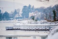 litoral gelé (Pyc Assaut) Tags: litoral gelé glacé froid cold geneva gneve suisse switzerland swiss glace ice lac lacdegeneve ponton jetée jety pyc5pyc pyc5pycphotography pycassaut vague de polaire neige chambésy chambesy pregnychambésy