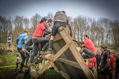 up and over (stevefge) Tags: 2018 berendonck gelderland strongviking viking endurance event mud sport people candid girls wooden climb nederland netherlands nl nederlandvandaag reflectyourworld action