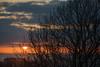 Gower Down (JDWCurtis) Tags: tree trees sunset sundown sun gower wales cymru southwales clouds sky skyscape sea cliffs seascape llangennith