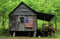 This is my country (Shannon Rose O'Shea) Tags: shannonroseoshea shannonosheawildlifephotography shannonoshea shannon maconcounty northcarolina building leaves green country americanflag mailbox haybales rustyandcrusty outdoors outdoor farmequipment cinderblock art photo photography photograph nature window godblessamerica porch canon canoneos80d canon80d eos80d 80d colorful roof old trees girlphotographer femalephotographer shootlikeagirl shootwithacamera throughherlens weeds house farmhouse rural america wildlifephotographer