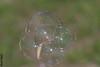 Seifenblasen / multi-bubbles :-) (HendrikSchulz) Tags: 2018 april ausflug canon canonef70200f4lusm canoneos7dmarkii hendrikschulz hendriktschulz landschaftsparktalaue natur park rems stuttgart waiblingen