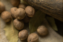 Nutmeg and Bayleaf (suzanne~) Tags: nutmeg bayleaf pestle spice condiment monochrome lensbaby indoor tabletop kitchen food macro