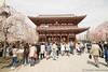 Senso-ji Temple, Asakusa Tokyo (takashi_matsumura) Tags: sensoji temple asakusa taitoku tokyo japan nikon d5300 浅草寺 浅草 東京 afp dx nikkor 1020mm f4556g vr