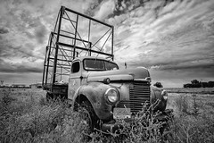 Retirement (PNW-Photography) Tags: international truck old vintage classic rusty dusty rust dust found explored lost urbex rural hermiston oregon sonya6000 sony a6000 rokinon rokinon12mm 12mm blackandwhite bw derelict