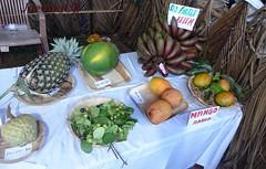 Konkan Fruits Fest 2018 (joegoauk73) Tags: joegoauk goa margao konkan fruit fest bsg festival fruits