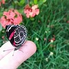 Cores da natureza.#flores #flowers #borboletas #naturalbeauty #natureza #naturephotography #jardim #floreslindas #revistaxapury #eunotg #criacaodedeus #obradivina #instaflowers #instaflores #motox2 #instamotox2 #garden #floricultura #intagram #instalike # (ederrabello2014) Tags: floricultura instamotox2 motox2 borboletas momentosregistrados naturephotography instalike brwildanimals3anos flowersofinstagram naturalbeauty eunotg natureza rosavermelha obradivina butterflyshow jardim instaflores flowers floreslindas flores revistaxapury flowerstagram flowersbouquet intagram criacaodedeus brwildanimals flowerslovers instaflowers intagrambrasil garden