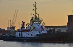 Multratug 5 (Hugo Sluimer) Tags: portofrotterdam port haven nlrtm zuidholland nederland holland onzehaven