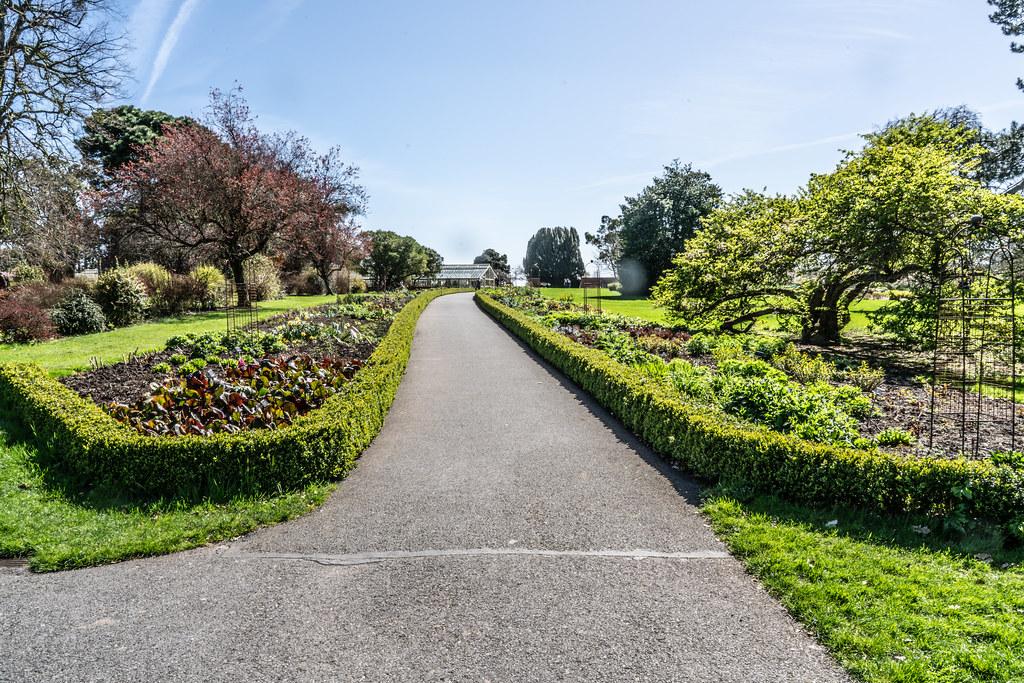 VISIT TO THE NATIONAL BOTANICAL GARDENS [GLASNEVIN DUBLIN]-138545