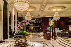 Lobby View - Hongkong 145/188 (*Capture the Moment*) Tags: 2017 architecture architektur hongkong häuserwohnungen innenarchitektur interiordesign kowloonshangrila sonya7m2 sonya7mii sonya7mark2 sonya7ii sonyfe2470mmf4zaoss sonyilce7m2