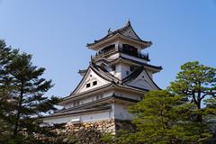 高知城 / Kochi Castle