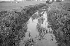Barmston Drain near Lissett (Tony McLean) Tags: ©2018tonymclean barmston eastyorkshire blackwhite monochrome leicamonochrom leica35summiluxfle