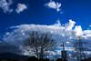 Deep Blue (duygu.gunay1) Tags: gökyüzü sky bulut cloud ağaç tree mavi blue kablo direk elektrik cable outdoor