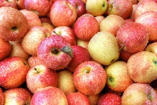 Rainy Day Apples (Explore)