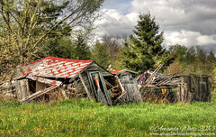 A church house, gin house A school house, outhouse... (sminky_pinky100 (In and Out)) Tags: abandoned fallen fallendown sheds outhouse ruraldecay landscape outside decay decaying novascotia canada omot cans2s