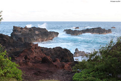 Manapany-les-Bains : le cap Chevron (philippeguillot21) Tags: rocher rock cap chevron manapanylesbains vague wave reunion indianocean france outremer africa pixelistes canon saintjoseph