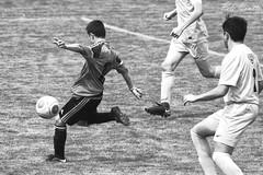 #FCKPotT_03 (pete.coutts) Tags: bodensee pokal 2018 fckaiseraugst fck juniorenc football fussball action soccer