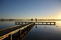 still pier (bobarcpics) Tags: lake reflections ballarat people pier timberpier macarthurstreet sunset ducks