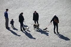Shadows (kiryeti) Tags: bruges brugge belgium shadow dogs square cobblestone