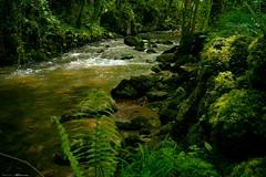 Voyage en Espagne 2018   0748 (Distagon12) Tags: rio river riviere eau water agua nature sauvage wild landscape asturias salas longexposure longuepose